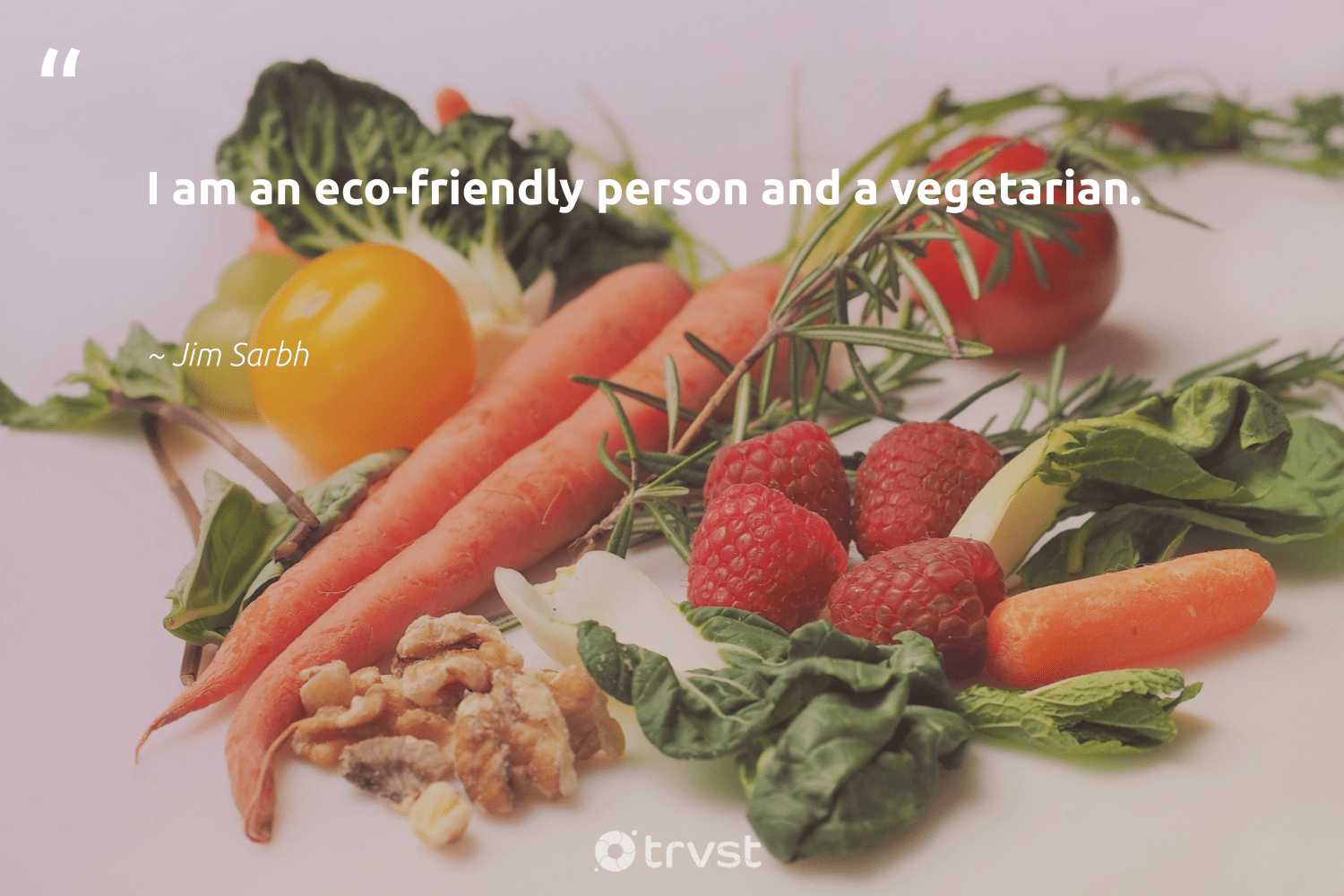 """""""I am an eco-friendly person and a vegetarian.""""  - Jim Sarbh #trvst #quotes #sustainability #ecofriendly #eco #vegetarian #sustainableliving #green #greenliving #socialchange #sustainable #fashion"""