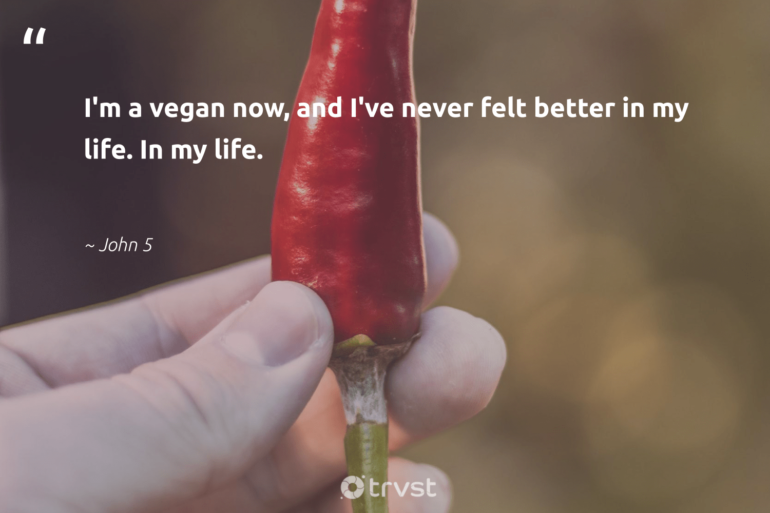 """I'm a vegan now, and I've never felt better in my life. In my life.""  - John 5 #trvst #quotes #vegan #vegetarian #gogreen #sustainable #planetearthfirst #plantbased #greenliving #bethechange #thinkgreen #govegan"