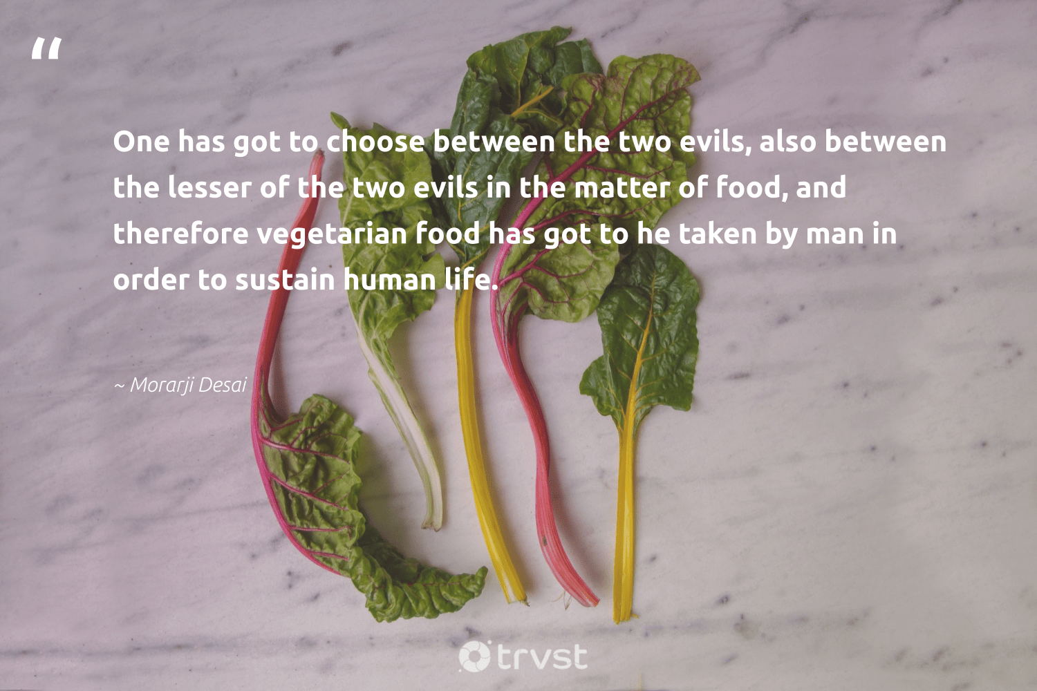 """""""One has got to choose between the two evils, also between the lesser of the two evils in the matter of food, and therefore vegetarian food has got to he taken by man in order to sustain human life.""""  - Morarji Desai #trvst #quotes #food #vegetarian #hunger #sustainable #makeadifference #takeaction #hungry #sustainability #inclusion #dogood"""