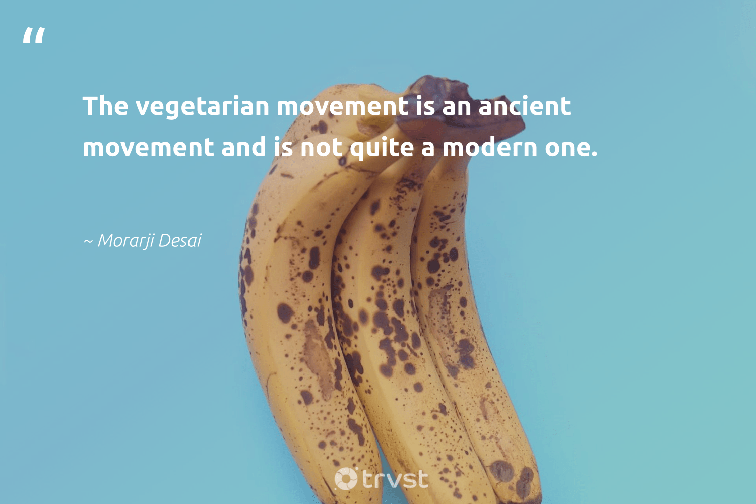 """""""The vegetarian movement is an ancient movement and is not quite a modern one.""""  - Morarji Desai #trvst #quotes #vegan #vegetarian #plantbased #green #sustainable #collectiveaction #whatveganseat #gogreen #sustainability #planetearthfirst"""