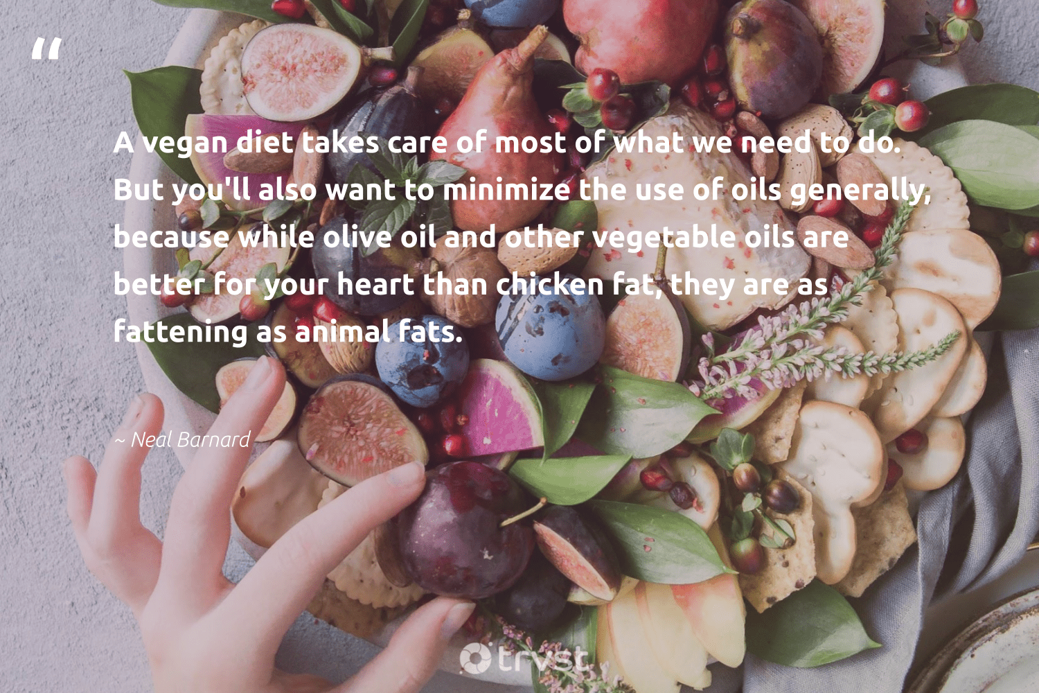 """A vegan diet takes care of most of what we need to do. But you'll also want to minimize the use of oils generally, because while olive oil and other vegetable oils are better for your heart than chicken fat, they are as fattening as animal fats.""  - Neal Barnard #trvst #quotes #oil #animal #vegan #coal #green #climateaction #takeaction #fossilfuels #sustainability #planetearth"