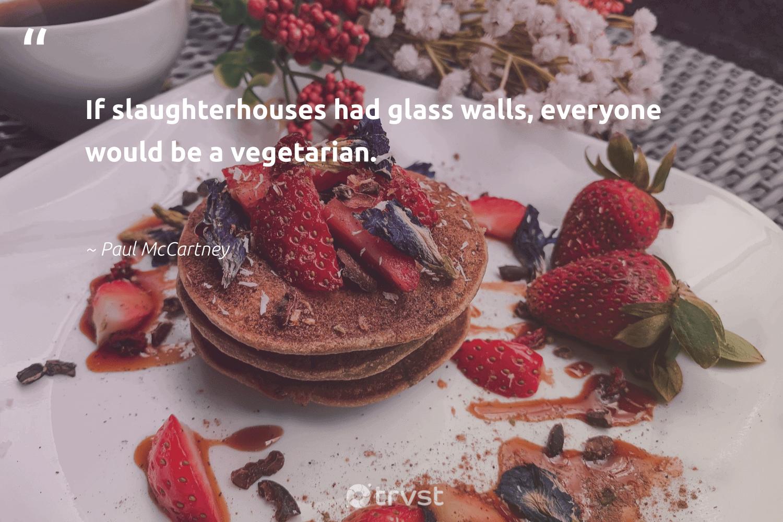 """If slaughterhouses had glass walls, everyone would be a vegetarian.""  - Paul McCartney #trvst #quotes #vegan #vegetarian #veganlife #green #sustainable #gogreen #govegan #bethechange #sustainability #socialimpact"