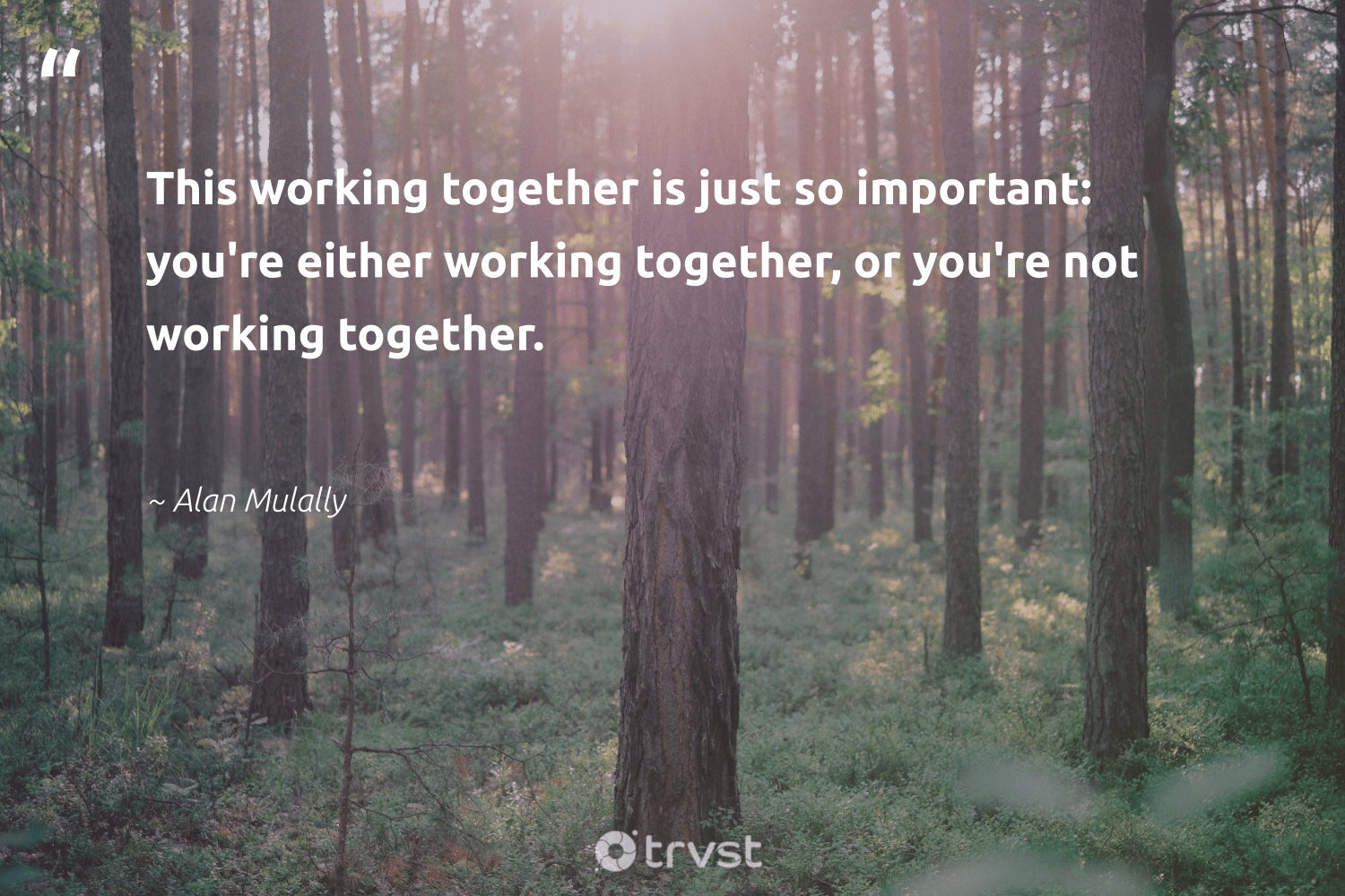 """This working together is just so important: you're either working together, or you're not working together.""  - Alan Mulally #trvst #quotes #workingtogether #futureofwork #collectiveaction #softskills #bethechange #nevergiveup #socialimpact #begreat #changetheworld #takeaction"