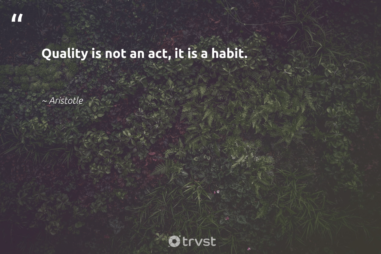 """Quality is not an act, it is a habit.""  - Aristotle #trvst #quotes #softskills #socialimpact #begreat #bethechange #nevergiveup #dosomething #futureofwork #gogreen #dogood #takeaction"