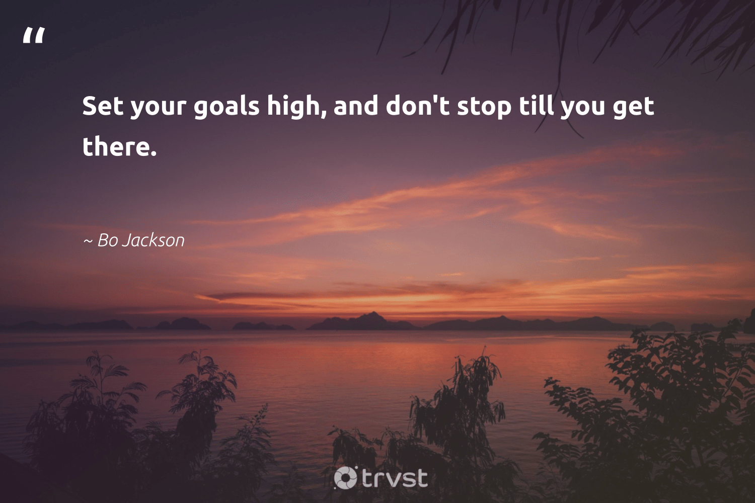 """Set your goals high, and don't stop till you get there.""  - Bo Jackson #trvst #quotes #goals #mindful #begreat #nevergiveup #takeaction #creativemindset #futureofwork #mindset #dogood #positivity"