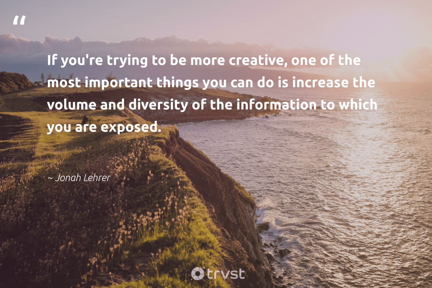 """If you're trying to be more creative, one of the most important things you can do is increase the volume and diversity of the information to which you are exposed.""  - Jonah Lehrer #trvst #quotes #diversity #creative #representationmatters #discrimination #nevergiveup #weareallone #dosomething #inclusion #futureofwork #makeadifference"