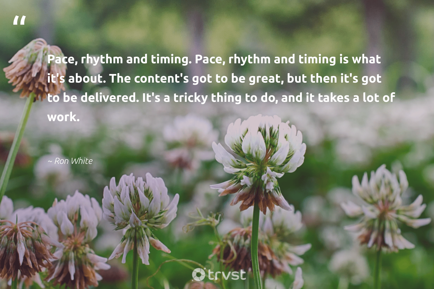 """Pace, rhythm and timing. Pace, rhythm and timing is what it's about. The content's got to be great, but then it's got to be delivered. It's a tricky thing to do, and it takes a lot of work.""  - Ron White #trvst #quotes #begreat #nevergiveup #bethechange #softskills #impact #futureofwork #dogood #thinkgreen #gogreen #planetearthfirst"