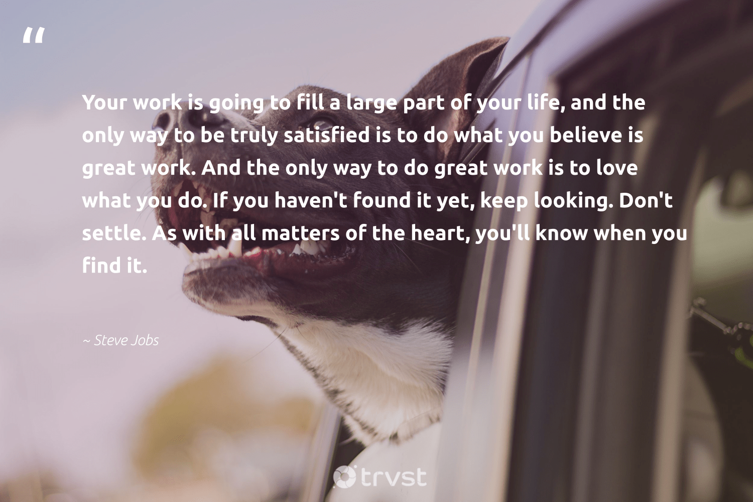 """Your work is going to fill a large part of your life, and the only way to be truly satisfied is to do what you believe is great work. And the only way to do great work is to love what you do. If you haven't found it yet, keep looking. Don't settle. As with all matters of the heart, you'll know when you find it.""  - Steve Jobs #trvst #quotes #love #begreat #gogreen #futureofwork #socialimpact #nevergiveup #ecoconscious #softskills #thinkgreen #dotherightthing"