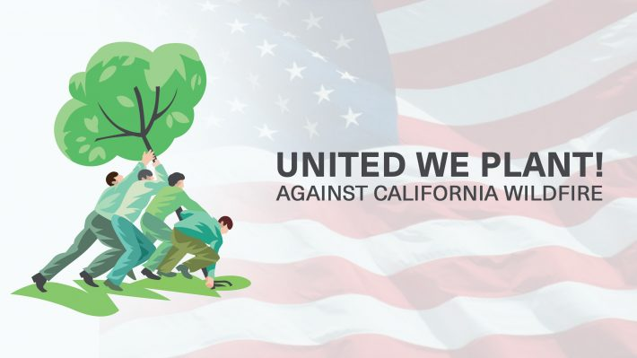 Treespond - United We Plant