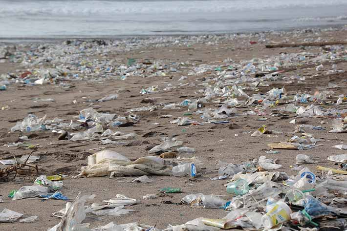 Ask For Non Plastic Straws - plastic garbage on the beach