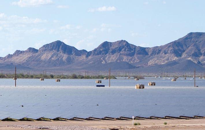 Agua Caliente Solar Project
