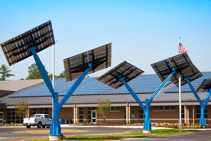 Spotlight Solar At Sandy Grove