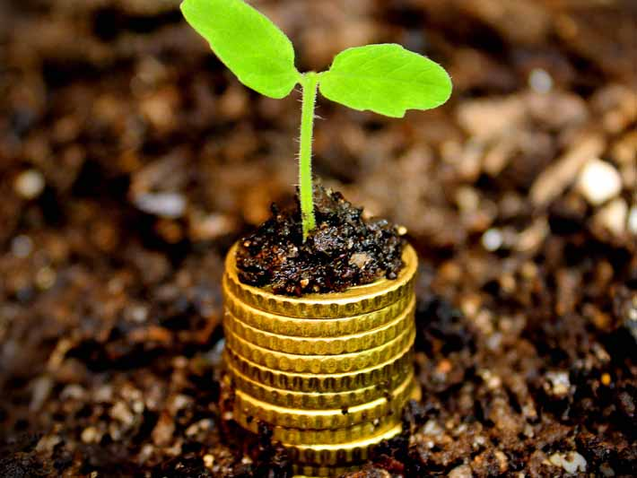 choosing a socially responsible financial planner