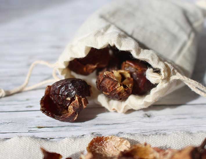 Soap nuts for plastic free washing