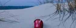 Run A Local Beach Cleanup