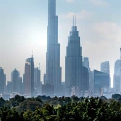 UAE Green Vision