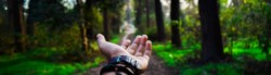 Eco Friendly Hand Sanitizer
