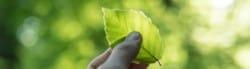 Sustainability Facts & Statistics